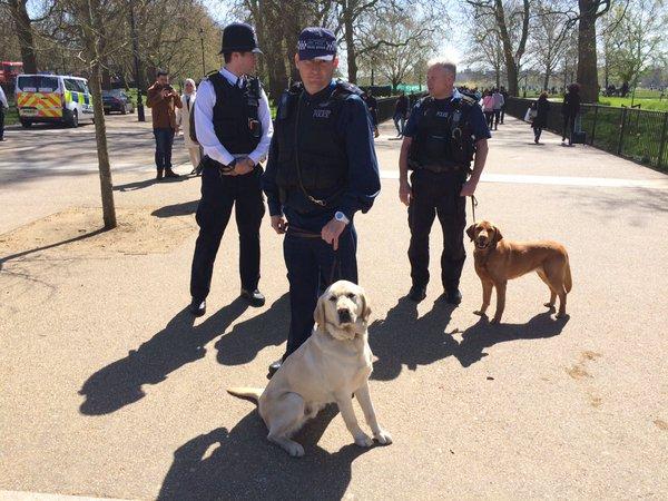 Police - London's Hyde Park