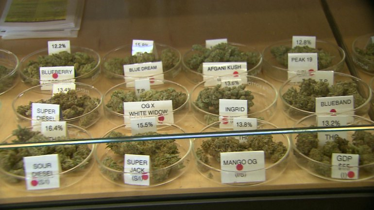 Cannabis on sale!