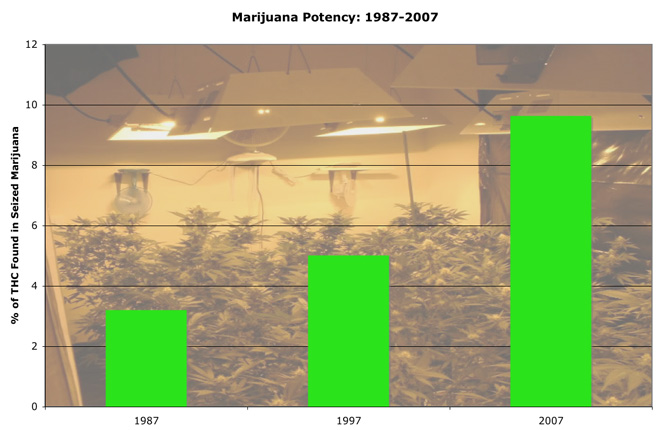 Potency of Cannabis