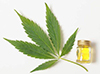 buy cannabidiol