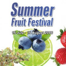 Summer Fruit Festival - Free Auto Blueberry Cannabis Seeds!