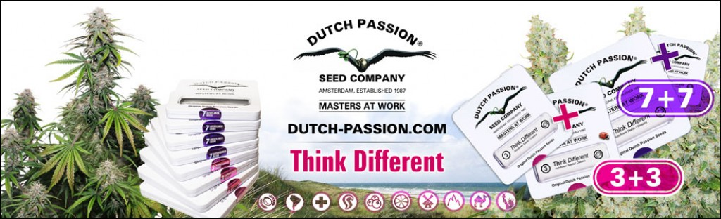Dutch Passion - Think Different Promo