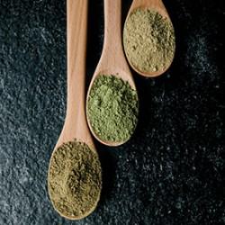 6 Impressive Benefits of Kratom Leaves