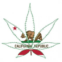 The Rules of California's Legalization of Marijuana