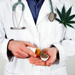 How to talk to your GP about Cannabis