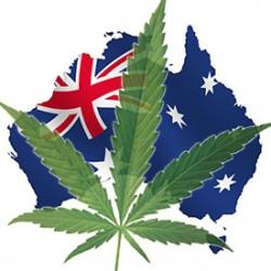 Australia to start prescribing Cannabis!