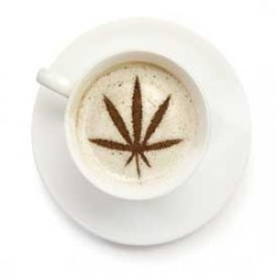 Caffeine mixed with Cannabis, what happens?
