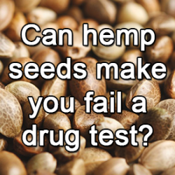 Can hemp seeds make you fail a drug test?