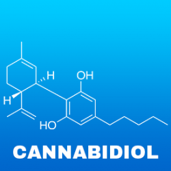 5 Unique Facts About Cannabidiol