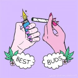 8 Things Not to do When Smoking Cannabis With Buddies