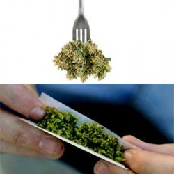 Smoking vs Eating Cannabis, what's the difference?