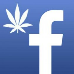Cannabis Facebook accounts being closed!
