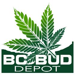 BC Bud Depot - Marijuana Seeds