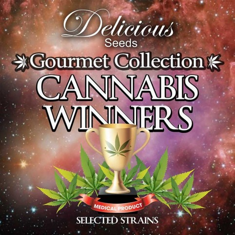 Cannabis Winners Mix #2 Cannabis Seeds