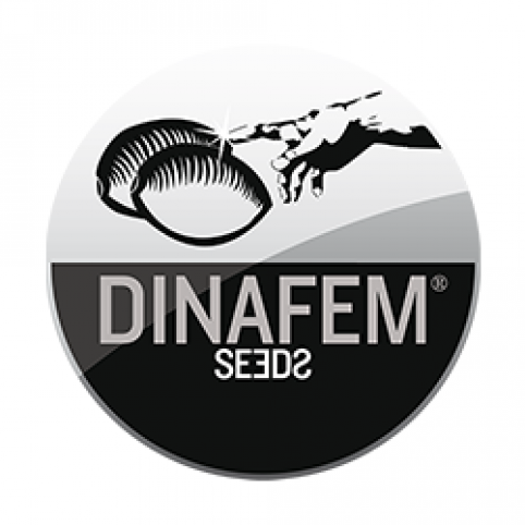 Dinafem Mix Cannabis Seeds