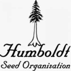 Humboldt Seed Organization - Cannabis Seeds