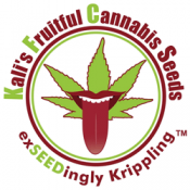 Kalis Fruitful Cannabis Seeds